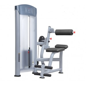 LT-6011---Back extension strength equipment
