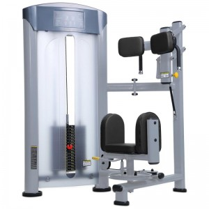 LT-6013---Torso rotation strength machine