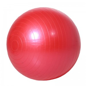LT-GMN001---Yoga Ball